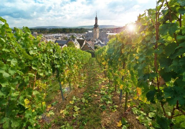 Day 22 - Rüdesheim, Cruising the Romantic Rhine River