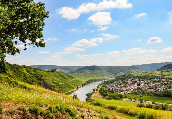 Day 9 - Moselle Valley Cruising