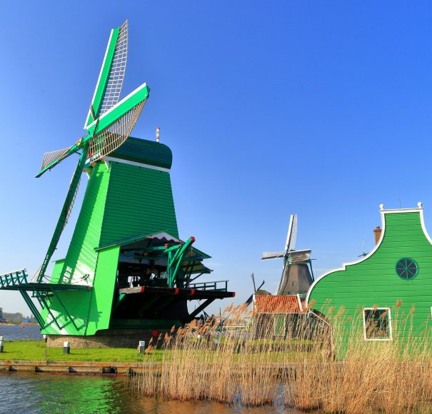Titan Travel River Cruise Tulips and Windmills